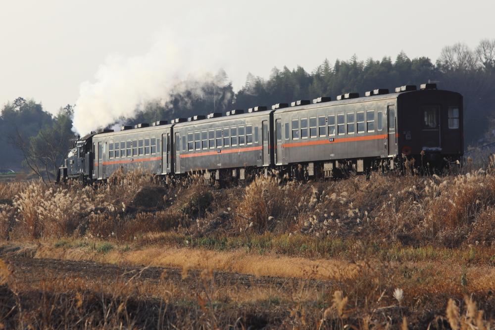真岡鐵道のサンタ列車を撮影する【後編】