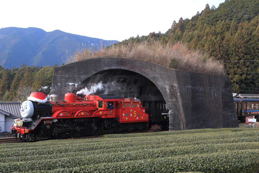 大井川鐵道のトーマス列車を撮影する【クリスマス特別運転・後編】