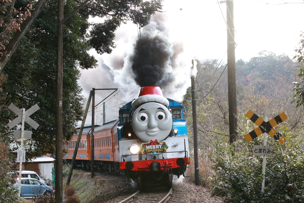大井川鐵道のトーマスを撮影する【クリスマス特別運転・前編】