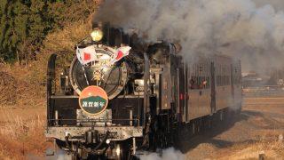 【C11 325号機】真岡鐵道で平成最後のSL新年号を撮影する