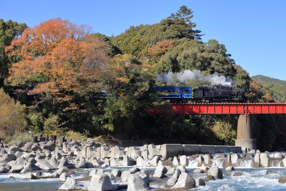 大井川鐵道のSL撮影スポットと言えばココ!!初めての訪問でオススメしたい撮影地3選