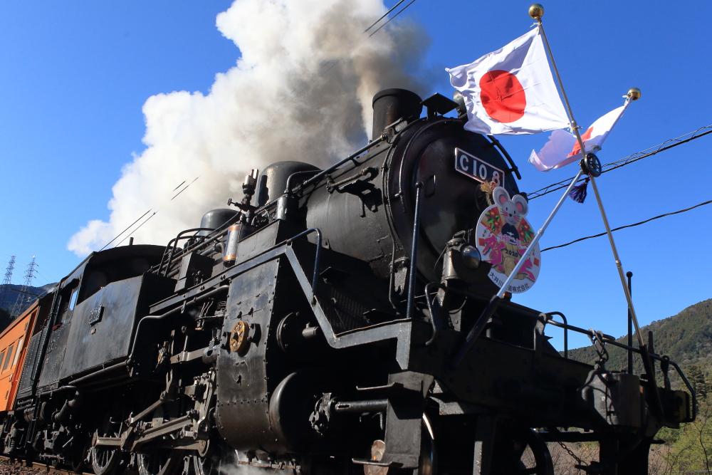 【新春開運号】お正月は大井川鐵道で蒸気機関車を撮影!!